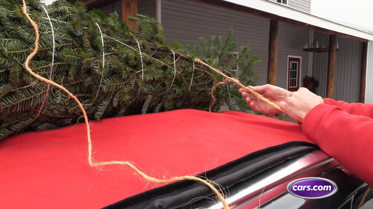 Tannenbaum Transport.How To Transport Your Christmas Tree Safely By Car News Cars Com