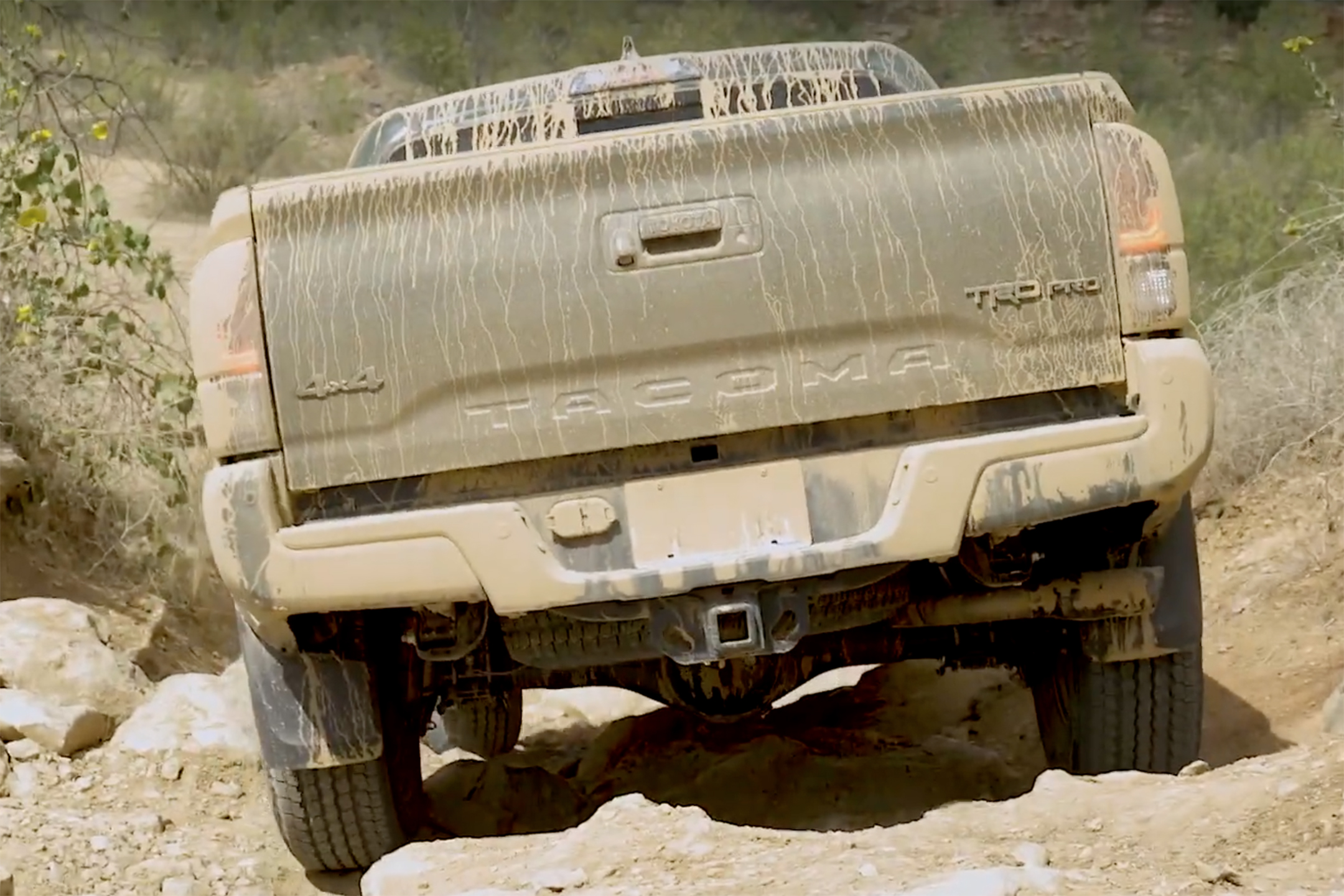 2020 Toyota Tacoma Video: We Get Down 'n' Dirty Down South