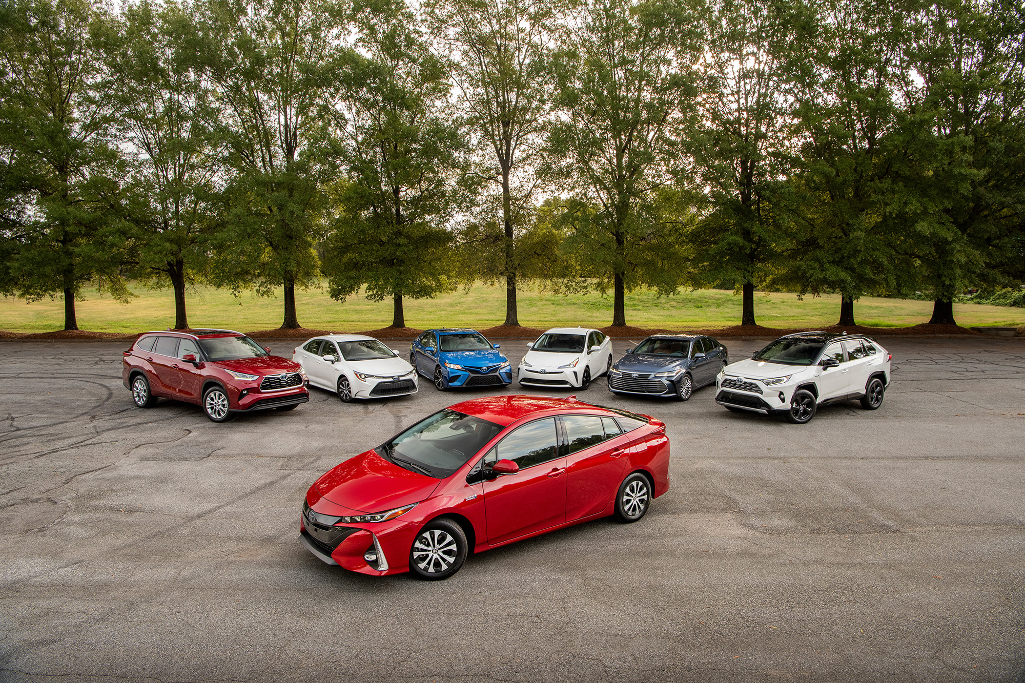 Toyota-Hybrids-group-outside-trees