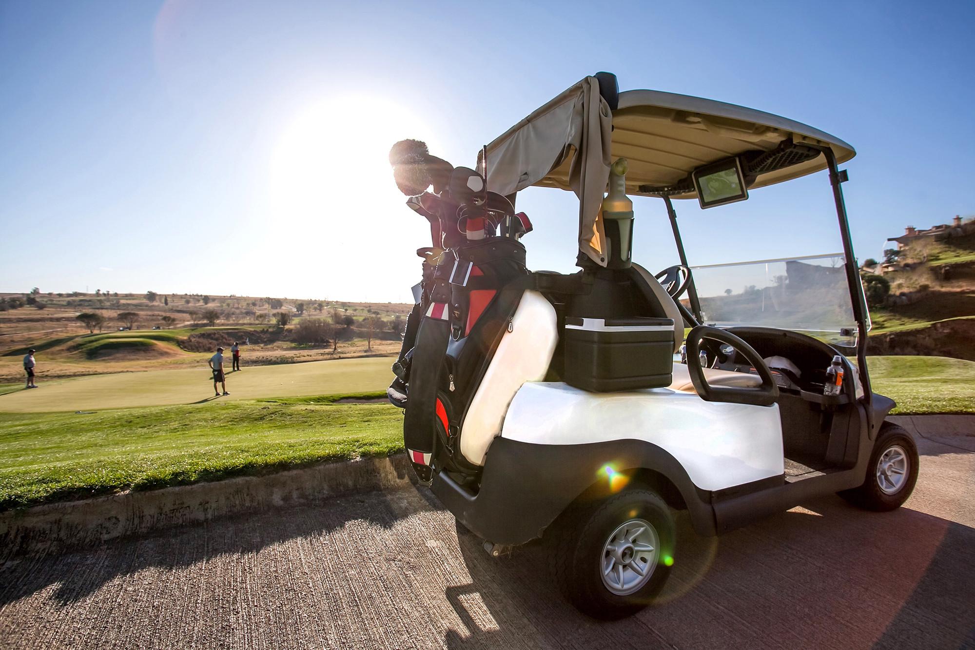club-car-dart-swinger--angle--golf-cart--golf-course--rear.jpg