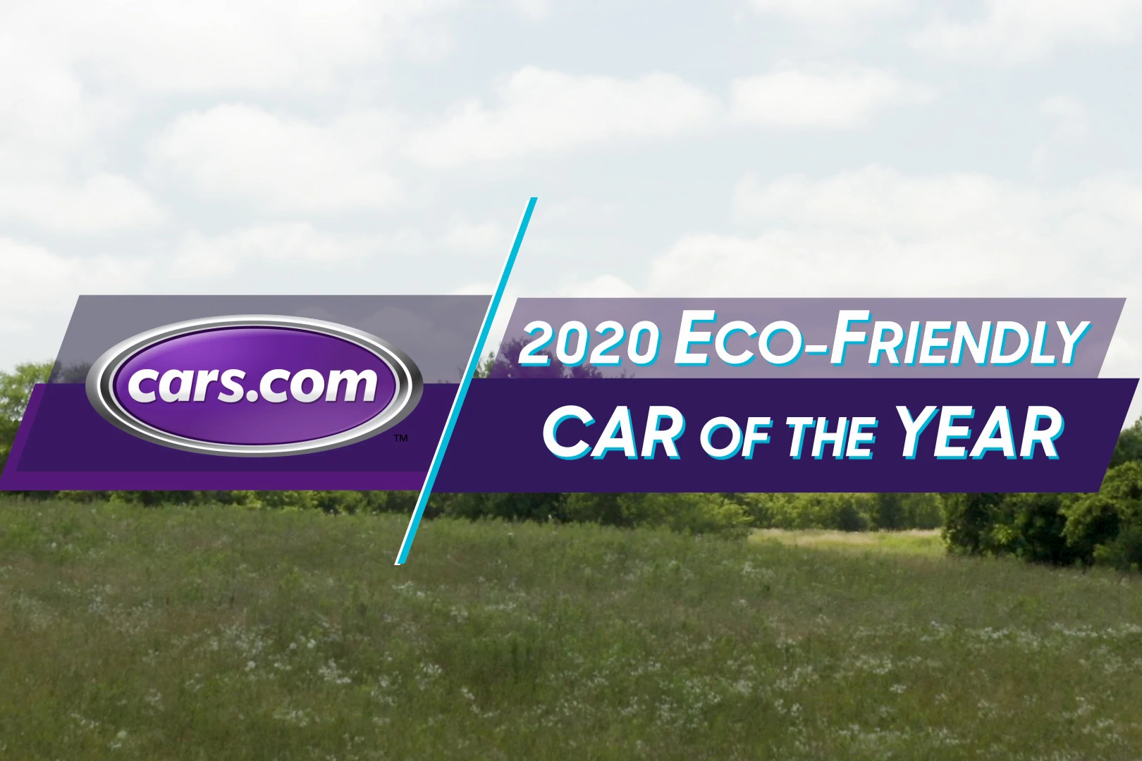 2020 Best Eco-Friendly Car of the Year
