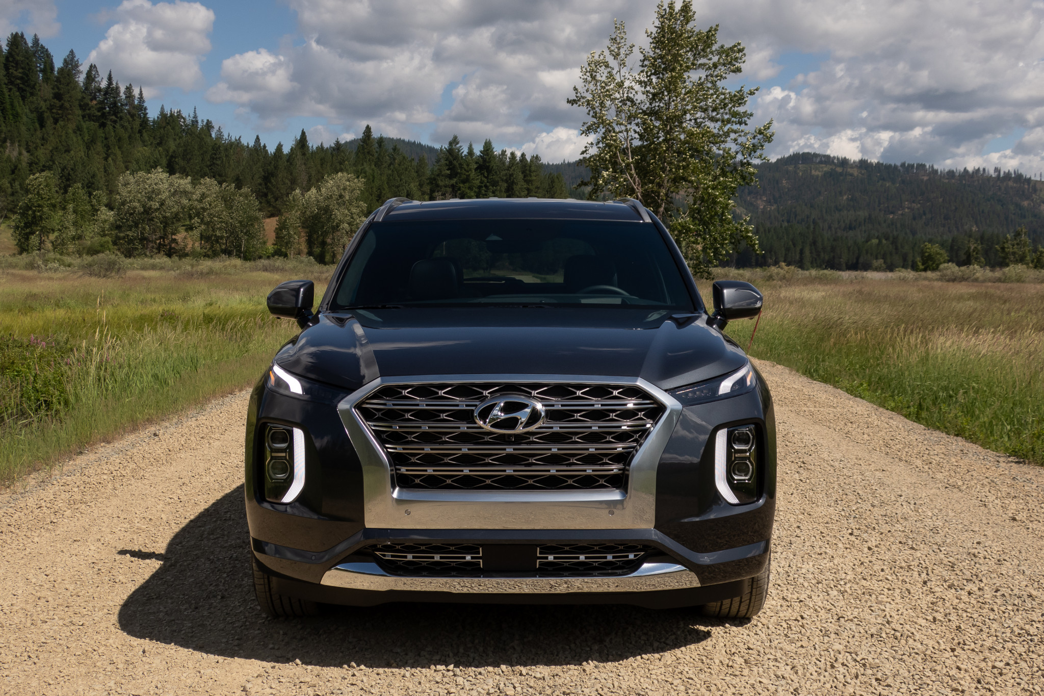 2020 Hyundai Palisade: Design, Specs, Release >> Top 5 Reviews And Videos Of The Week 2020 Hyundai Palisade Stands