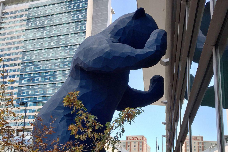 DENVER BLUE BEAR.jpg