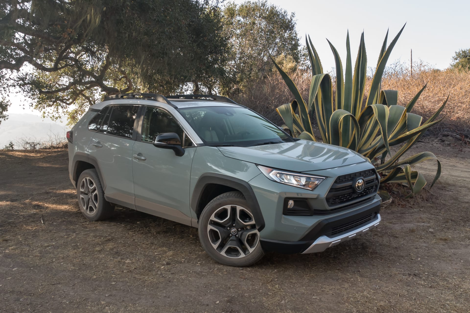 2019 Toyota RAV4: 5 Things We Like (and 5 Not So Much