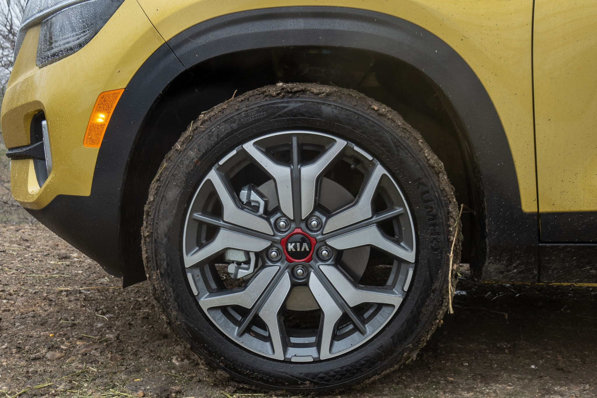 kia-seltos-2021-18-badge--exterior--mud--outdoors--wheel.jpg