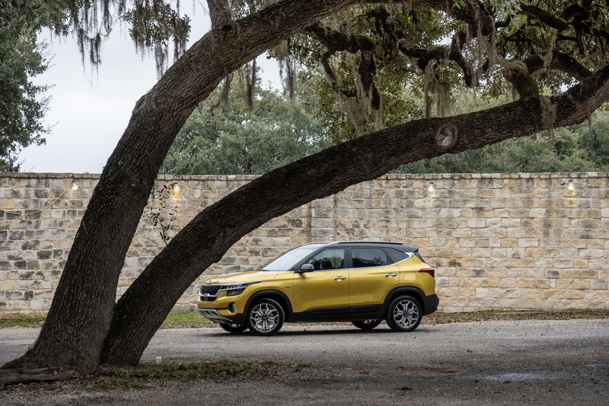 2021 Kia Seltos: Everything You Need to Know