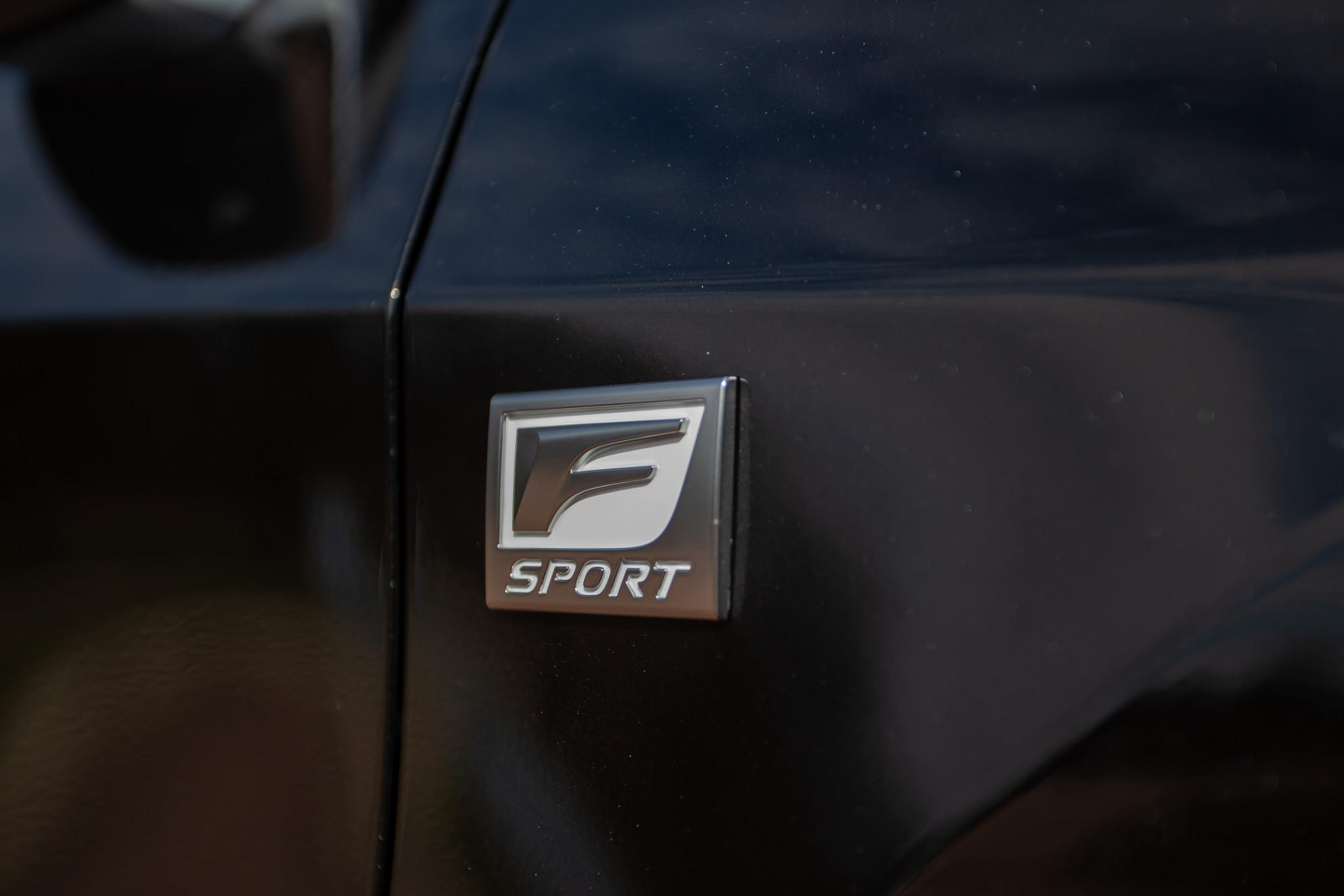 lexus-rx-350-2020--08-badge--black--exterior--profile.jpg